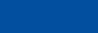 Delta Direkt Logo blau